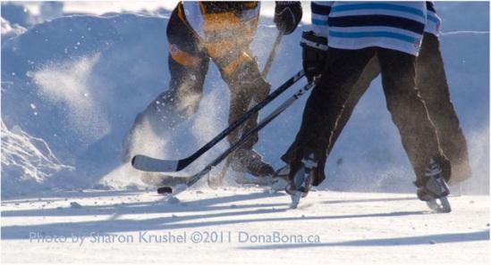 Alberta Pond Hockey